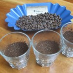 Cupping: The Elements of Quality Coffee