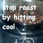 Home Roasting with the Hearthware Precision