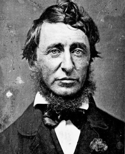 henry david thoreau coffee