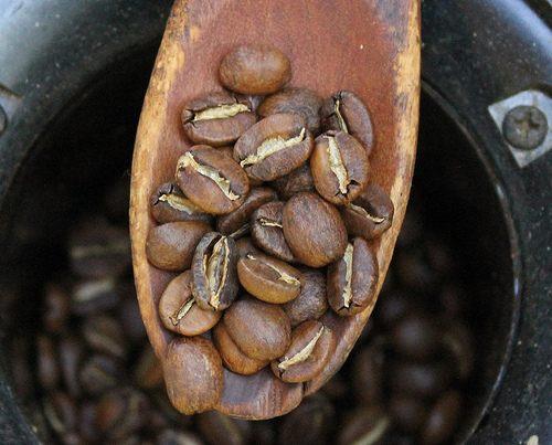 coffee-roast-level-1