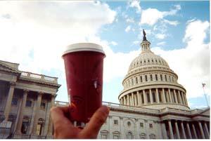 Washington DC Coffee House Journey