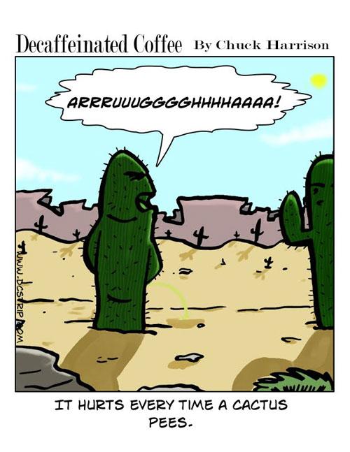 cactus pee