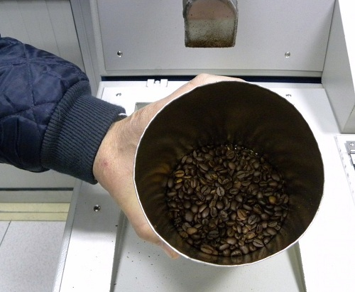 Fresh Roasted Beans