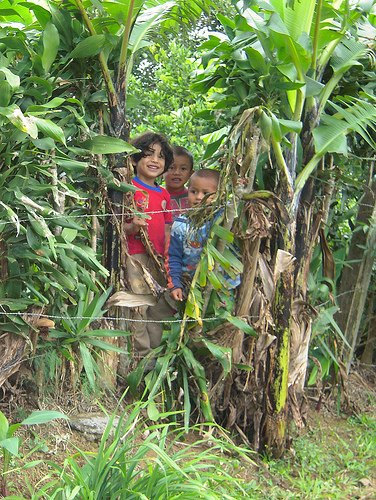 Kids on a Costa Rica Coffee Farm