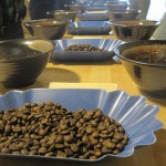 Coffee Cupping – A Sensory Experience