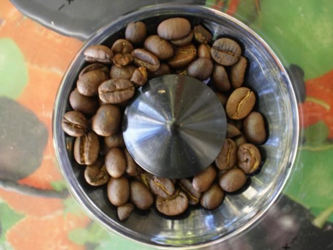 inside bean hopper