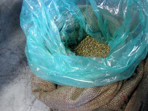 Open bag of green coffee