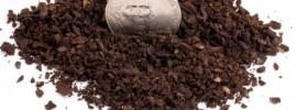 Toddy Grind by US nickel