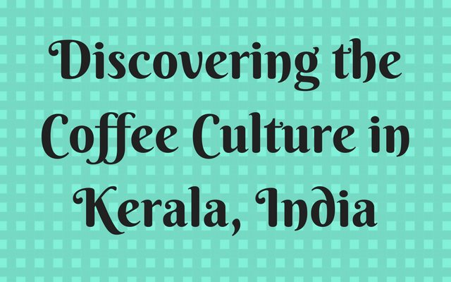 Discovering the Coffee Culture in Kerala, India