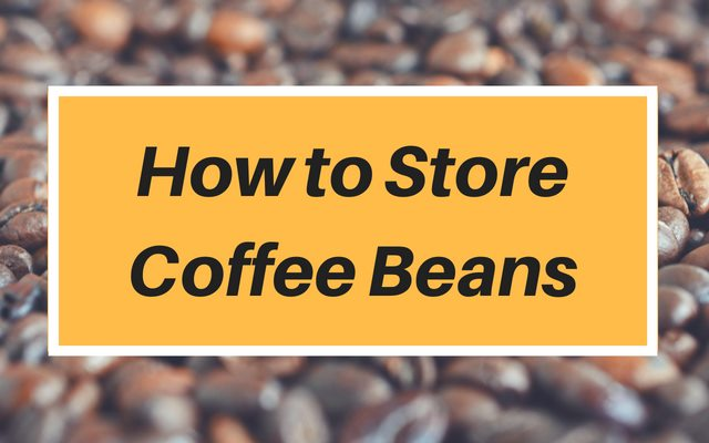 How to Store Coffee Beans (Tips and Recommendations)